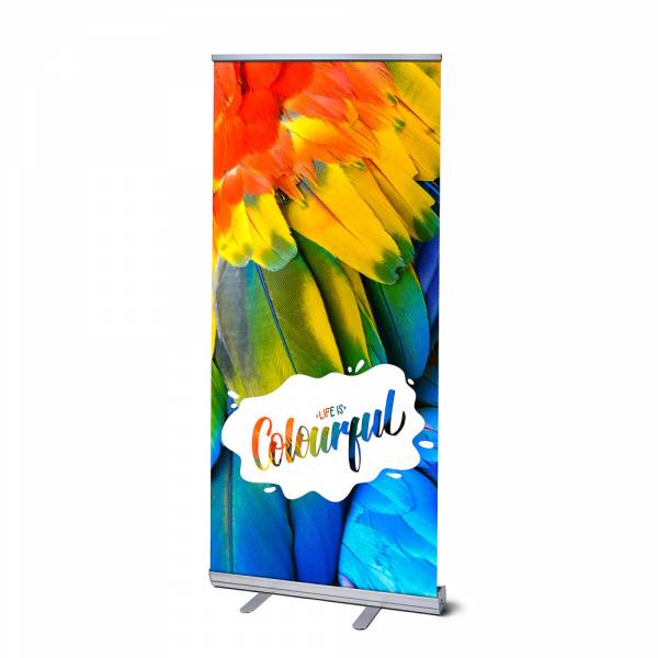 Roll Up Display Standard